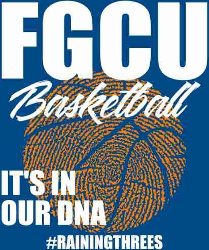 DNA basketball b